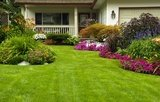 Landscaping and Lawn Care in Tacoma Puyallup Lakewood Fircrest Gig Harbor University Place Washington State - Nasim and Sons